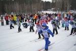 Соревнования «Лыжня России — 2015»